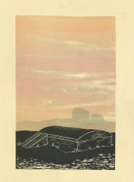 "Cairo, Illinois. Woodcut and monoprint. 30""X 22"", 2017"